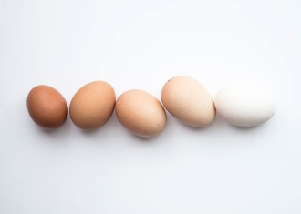 Health Skin Centre 濕疹敏感常見致敏食物